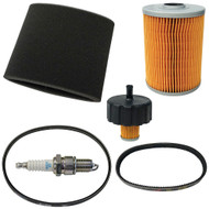 Golf Cart Deluxe Engine Maintenance Tune-Up Kit, Yamaha G2, G9, G11 4-Cycle Gas