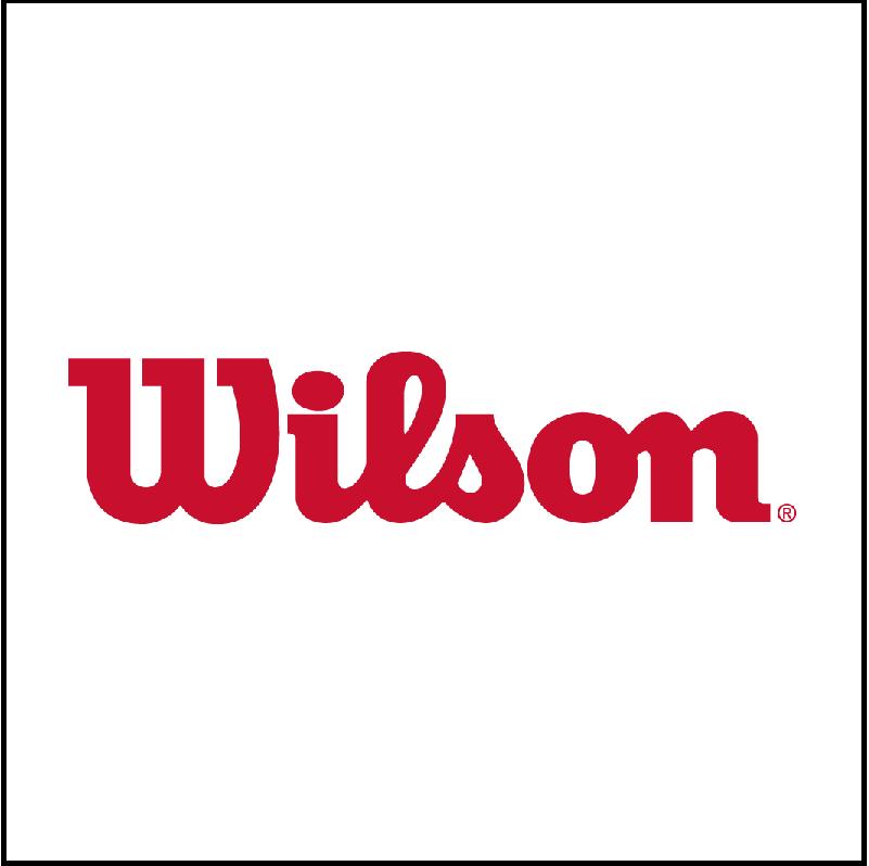 Wilson volleyball logo
