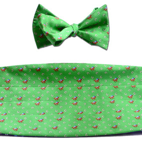 Horses & Horseshoes Cummerbund & Bow Tie Set - Green