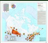 Canada Ethnic Diversity