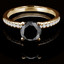 Round Cut Black Diamond Multi Stone 4-Prong Engagement Ring in Yellow Gold - #NALA-Y-BLK
