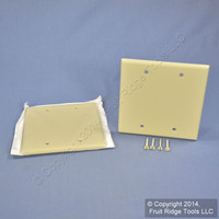 2 Leviton Ivory RESIDENTIAL 2-Gang Blank Cover Wallplates Box Mount 86025