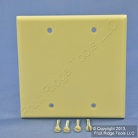 New Leviton Ivory 2-Gang Blank Box Mount Cover Plastic Standard Wallplate 86025
