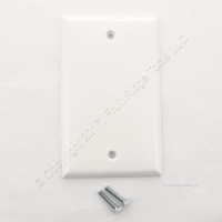 Ace White Thermoset Standard Size 1-Gang Blank Cover Box Mounted Plastic Wallplate Residential Grade