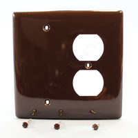 Hubbell Mid-Size Brown Blank Receptacle Outlet Combination Unbreakable Nylon 2-Gang Cover Wallplate NPJ138