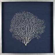 Large Sea Fan