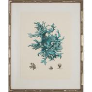 Turquoise Coral III