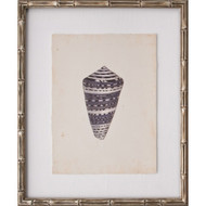 Mini Diderot Shell II