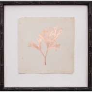 Copper Leaf Seaweed III