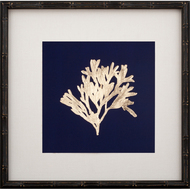 Gold Leaf Kelp on Navy Paper I