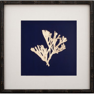 Gold Leaf Kelp on Navy Paper II