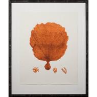 Tangerine Coral Giclee II