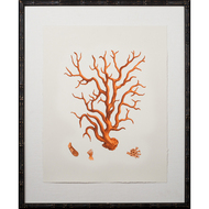 Tangerine Coral Giclee III
