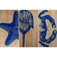 Crustacean Trio Panels - Set of 3