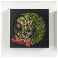 "Mini Green Wall 12""SQ Kalanchoe Flower"