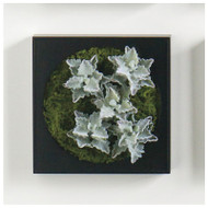 "Mini Green Wall 12""SQ Oakleaf Kalanchoe"
