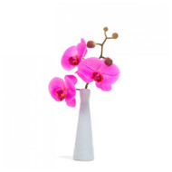 "Orchid 10.5""H Budvase - Set of 6"