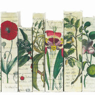 Antique Botanical Series Collection