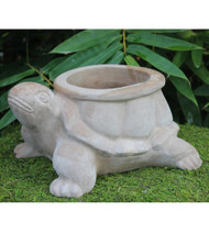 Anamese Turtle Planter