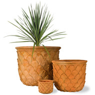 Capital Garden Pineapple Planter