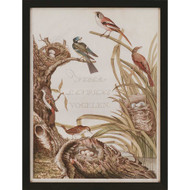 Paragon Sanctuary for Birds