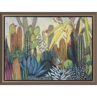 Paragon Succulents