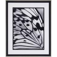 Paragon Flutter I