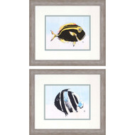Paragon School of Fish II Phttps://cdn3.bigcommerce.com/s-nzzxy311bx/product_images//k/2