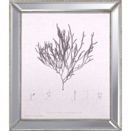 Paragon Linen Seaweed IV