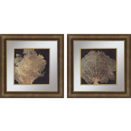 Paragon Gold Coral I Phttps://cdn3.bigcommerce.com/s-nzzxy311bx/product_images//k/2
