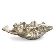 Med clam shell w/small silver shells
