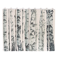 E Lawrence Birch Tree Trunks