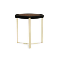 Caracole The Naturalist End Table - 24""
