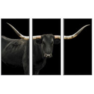 Black Long Horn Triptych(Set of 3- 24 x 48)