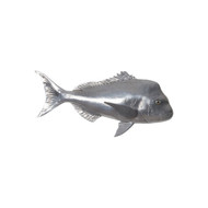 Phillips Collection Australian Snapper Fish, Polished Aluminum