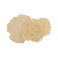 Phillips Collection Flower Wall Art, Ivory, MD