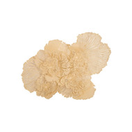 Phillips Collection Flower Wall Art, Ivory, LG