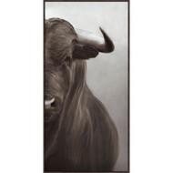 Portrait of a Bull III