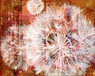 Art Classics Leaves and Dandelions II