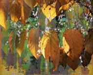 Art Classics Leaves and Dandelions VIII