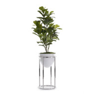 Green Fiddle-Leaf Fig Tree with Silver Stand