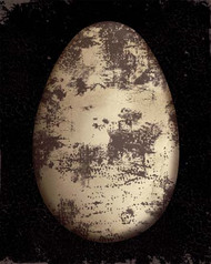 Art Classics Brown Speckled Egg