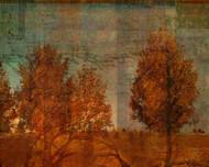 Art Classics Shadow of Trees Three