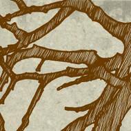 Art Classics Sketchbook Branches