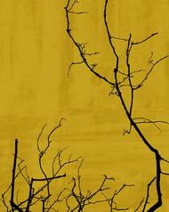 Art Classics Tree Poetry Left