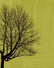 Art Classics Tree Poetry Right