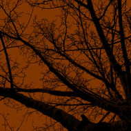 Art Classics Twilight Trees Rust Left