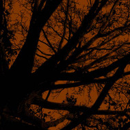 Art Classics Twilight Trees Rust Right