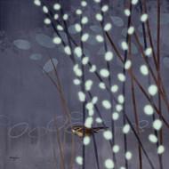 Art Classics Willow Wren 1