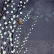 Art Classics Willow Wren 2